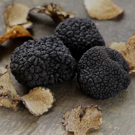 Black Truffle Extract 100ml